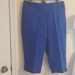 Susan Graver Pull on pants
